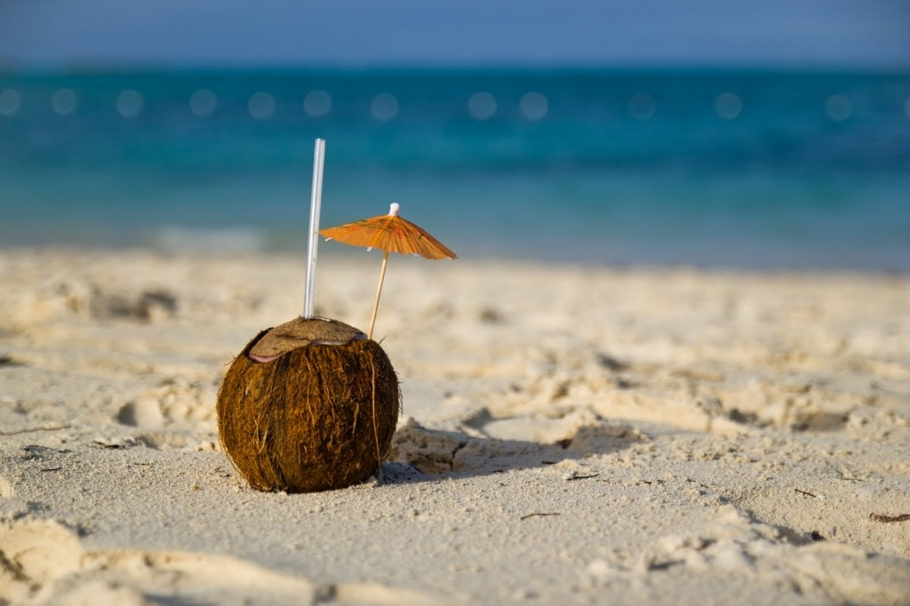 coconut-beach-1024x682