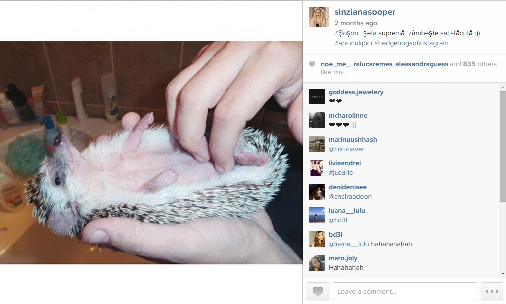 instagram sinziana maria iacob 5