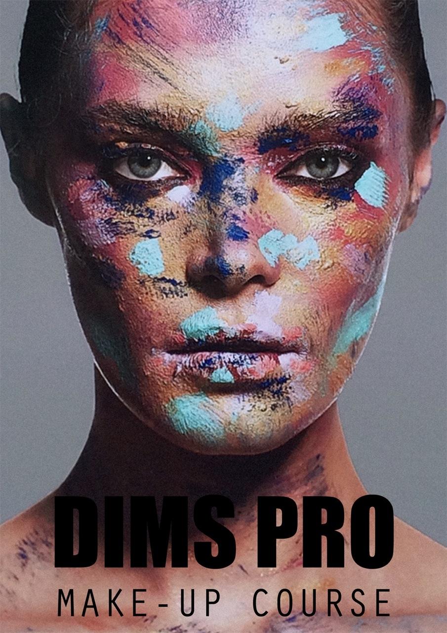 DIMS PRO PLIANT copy 2 cover